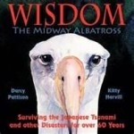 Wisdom by Darcy Pattison book cover