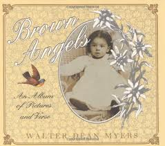 brown angels by myers