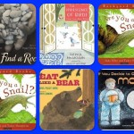 Mentor Texts in the Classroom: A Second Person Point of View Writing Challenge